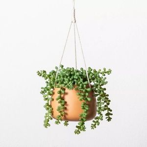 New Hearth & Hand Hanging Plant String of Pearls